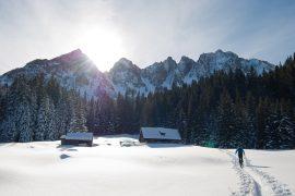 metoda alpen