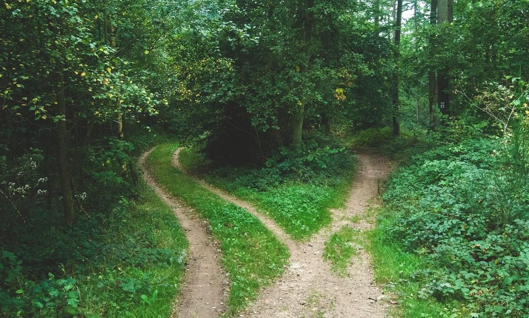 jak podejmować decyzje